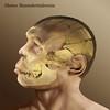 J'avais envie d'illustrer une série d'hommes préhistoriques, en partant de la théorie récente, soit qu'ils pouvaient ressembler aux hommes d'aujourd'hui. <br /> J'ai trouvé des photos de crânes et j'ai imaginé le fasciès qui pouvait les recouvrir.<br /> Voici ma version de l'homme de Néandertal.