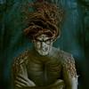 A tree man. Un homoplante. Couverture du livre: Les chroniques de Braven Oc. Client: Les intouchables
