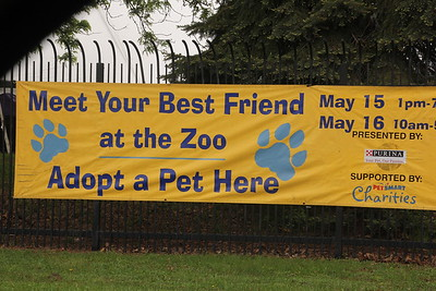 Meet your pet at Detroit Zoo