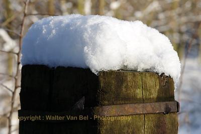 Sneeuwwandeling_20090106_Itegem_CRW_12082_WVB_1200px
