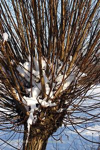 Sneeuwwandeling_20090106_Itegem_CRW_12070_WVB_1200px