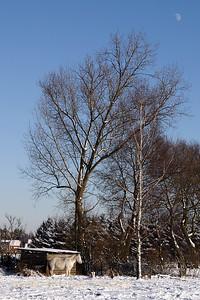 Sneeuwwandeling_20090106_Itegem_CRW_12073_WVB_1200px