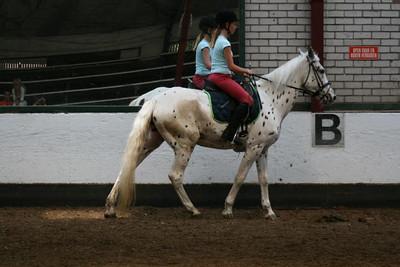 Milou paardrijden Poelenburg Schoorl. Foto's Jaap van Leeuwen