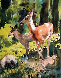 Two Deer in Clearing