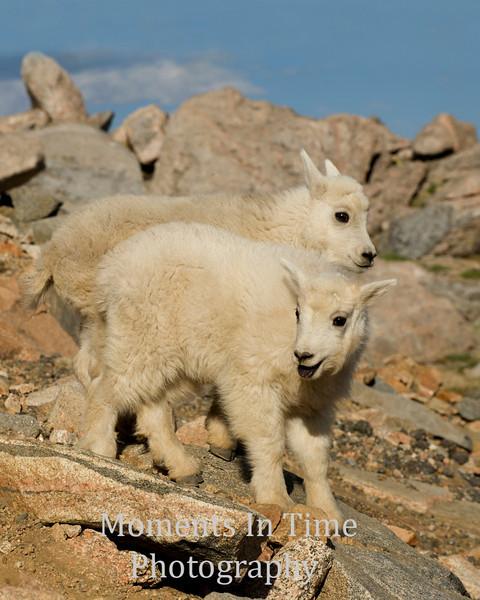 two kids in rocks