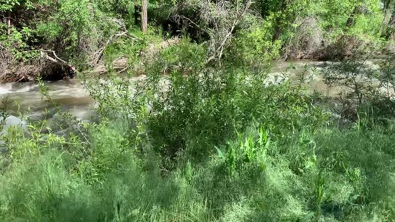 Video (iPhone)  Surface Creek, Cedaredge, Colorado