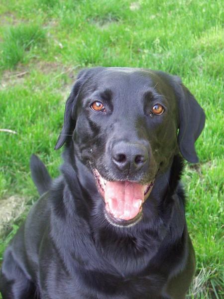 Berty smile May 2006