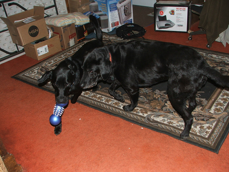 Sarge & Berty - 2005
