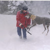 the blizzard of Jan 17, 2003.  We had only had Kozie for a week, when this happened!