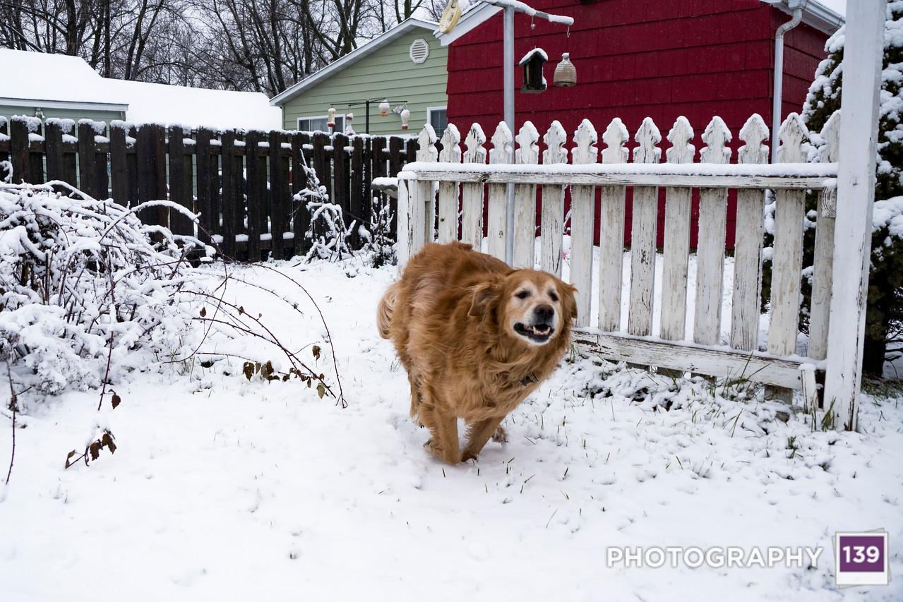 Naima + Snow