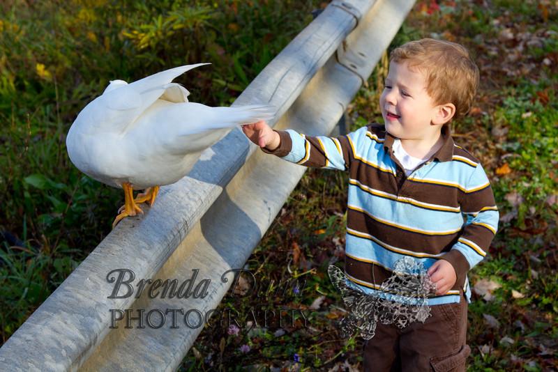 10-14-2011-Nathan_Ducks-1177-2