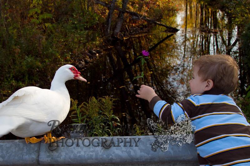 10-14-2011-Nathan_Ducks-1215