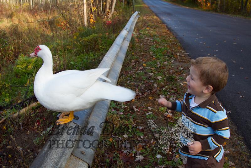 10-14-2011-Nathan_Ducks-1125