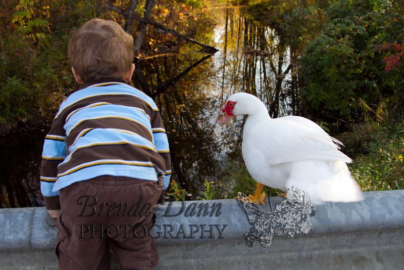 10-14-2011-Nathan_Ducks-1236