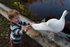 10-14-2011-Nathan_Ducks-1123