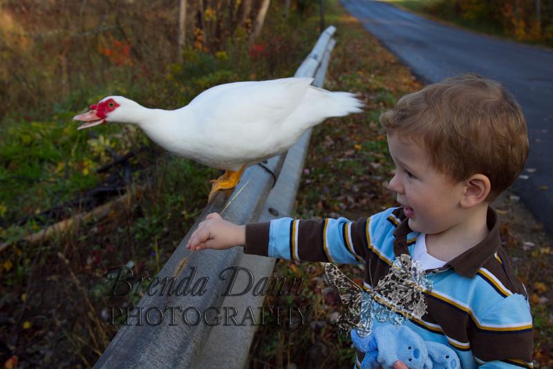 10-14-2011-Nathan_Ducks-1082