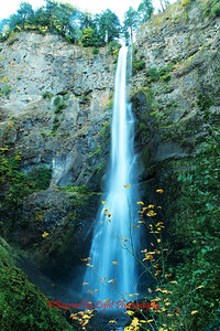 Upper Multnomah Falls