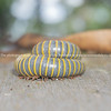 Giant yellow and black millipede