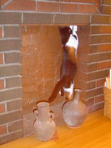 Climbing up the fireplace