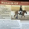 Promotional information on newborn foal Rose's sire, Nunavik GF, of Apple Creek, Ohio. Both are Haflinger breed of horse. (SUN/Julia Malakie)