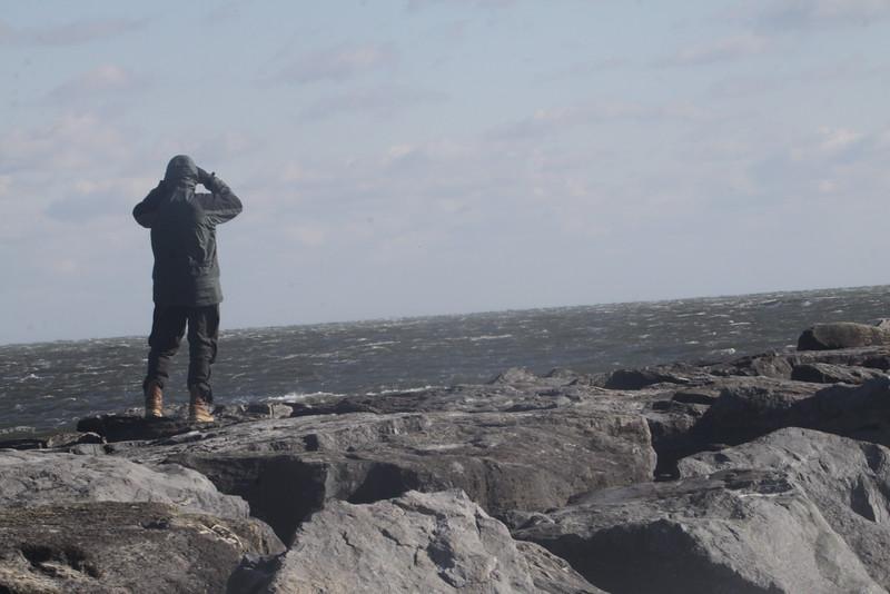 Bruce on rocks