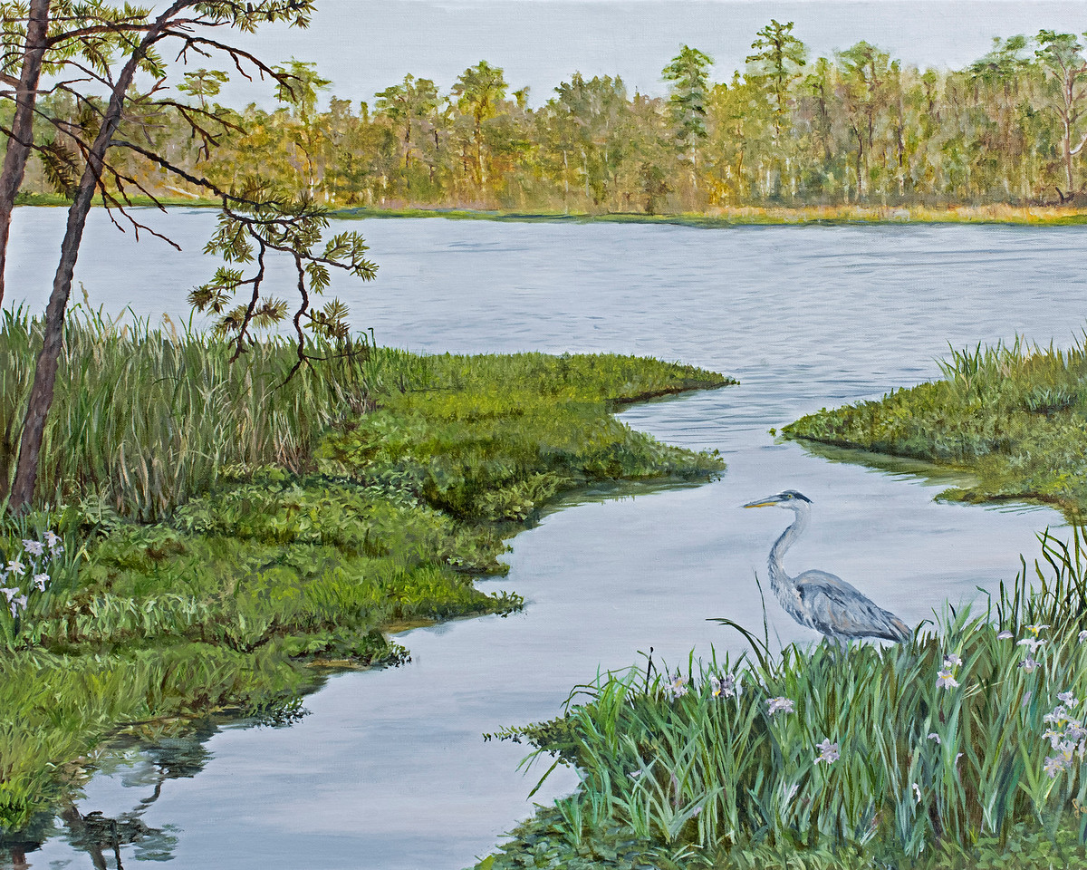 Aligator River View   (Sold)