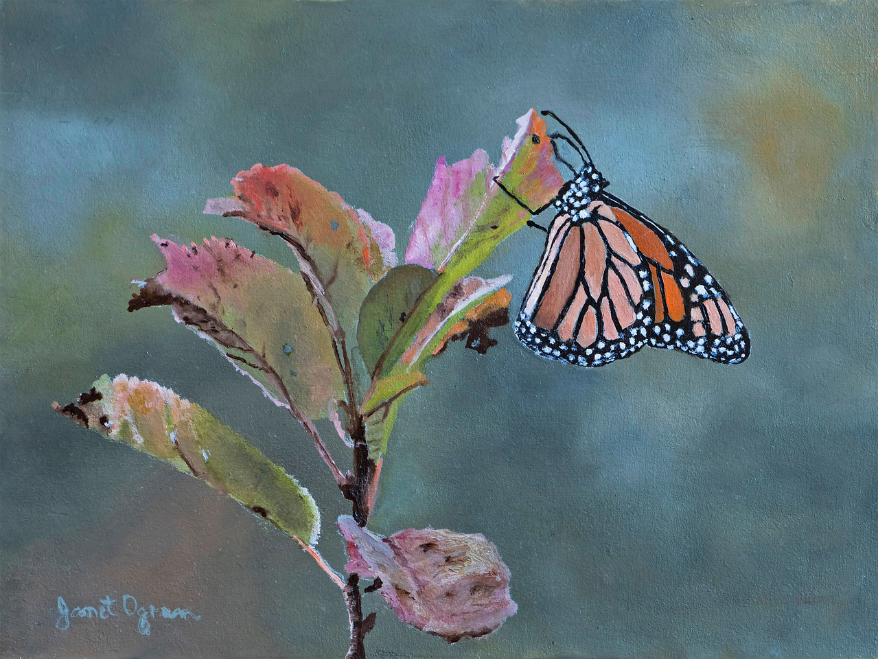 Monarch on Milkweed  (Sold)