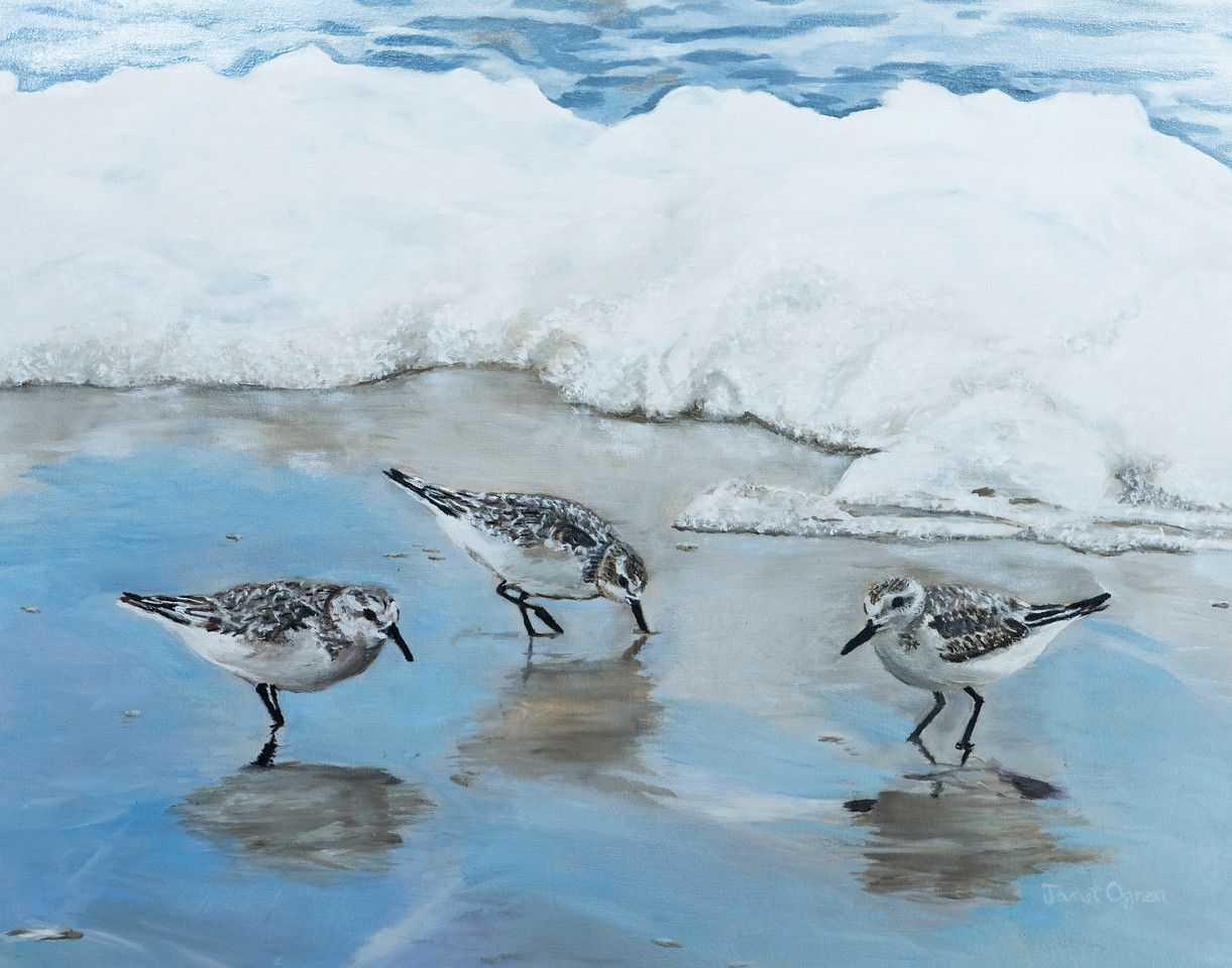 Sandpipers and  Foam (SOLD)