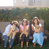 puppy play date ppatch 032