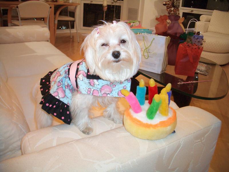 09- Happy Birthday Dolly (Meyer)