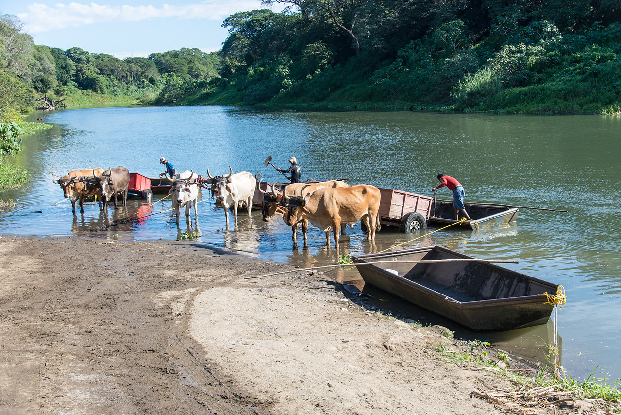 """Sandmen"" shoveling sand into ox carts - Guanacaste, Costa Rica - December 2014"