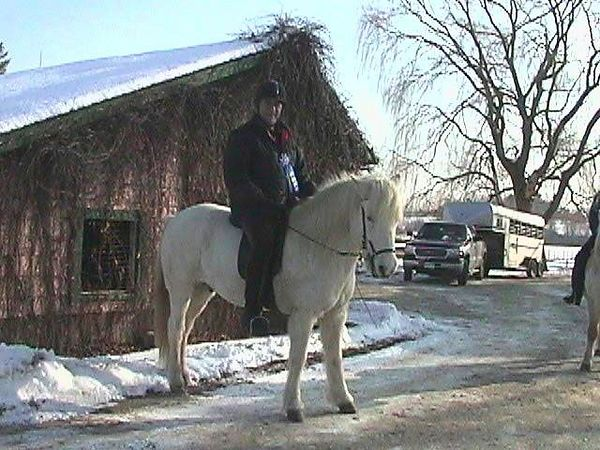Just before Christmas, 2002, Somi won his first blue ribbon in a novice dressage competition.  He had been in the States for a little over one year.  We were very proud of each other!