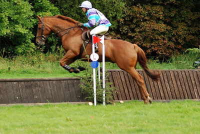 Jill on Cut the Gossip (Charlie) competing at Whitehill,Kettleholm early Sept 2007.