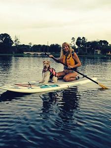 koi paddleboarding
