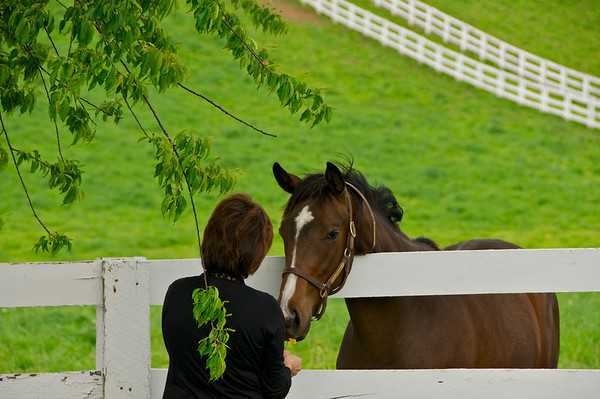 Paula, the horse lover