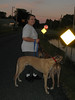 Tanya and the dogs out for an evening walk.