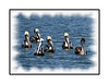A flotilla of pelicans in the marina at Chololoskee Island in the Everglades; view in the larger sizes to see the details.