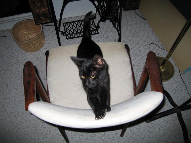 Gomez. 4 Dec 2011