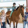 SRd1709_3476_Horses