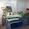 Sleeping Beauty_20120217_013