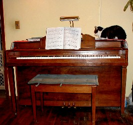Max on the piano. Max