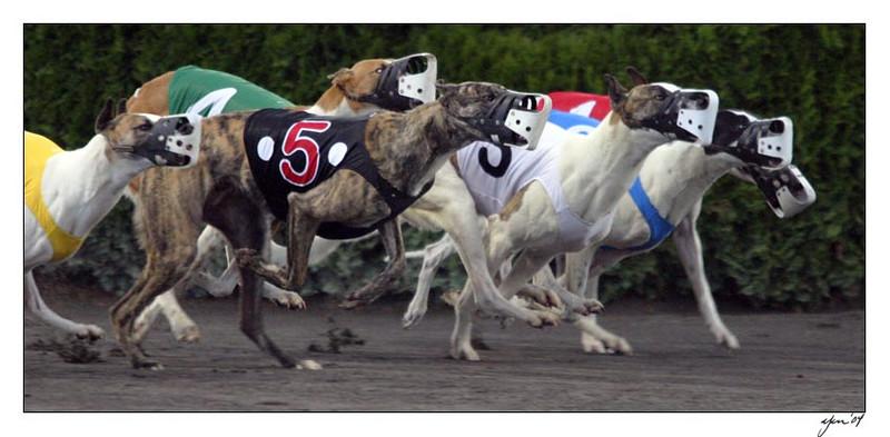 racing 05-28-04 04