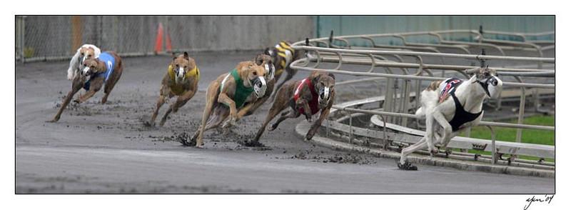 racing 05-28-04 02