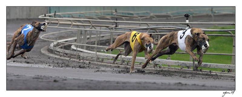 racing 05-28-04 05