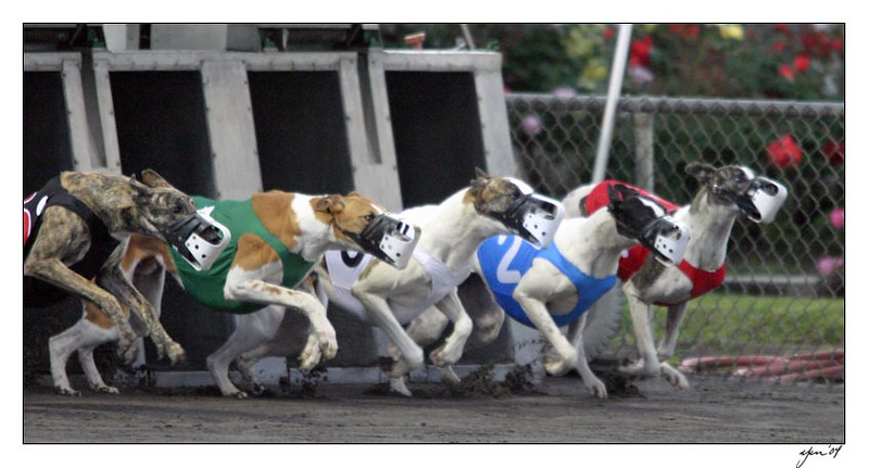 racing 05-28-04 03