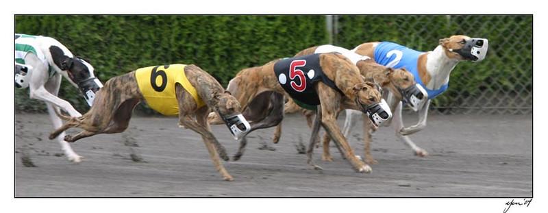 racing 05-29-04 06