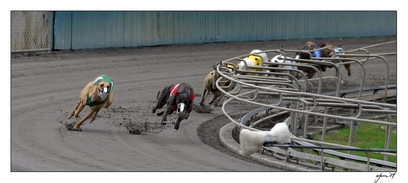 racing 05-29-04 15