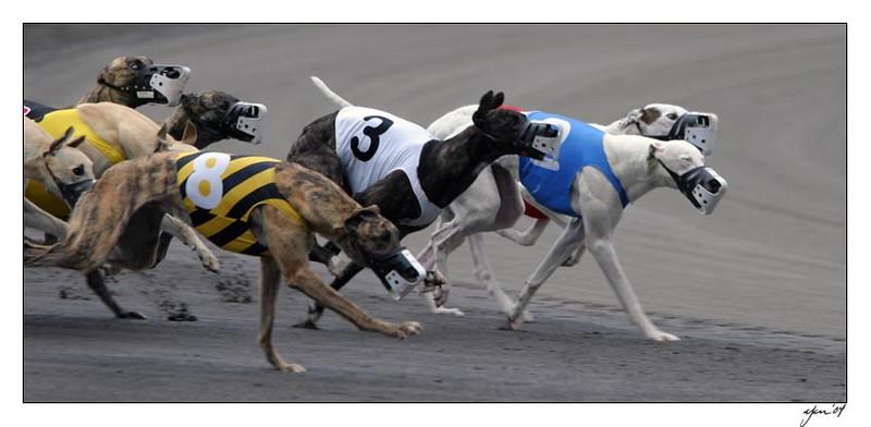 racing 05-29-04 13