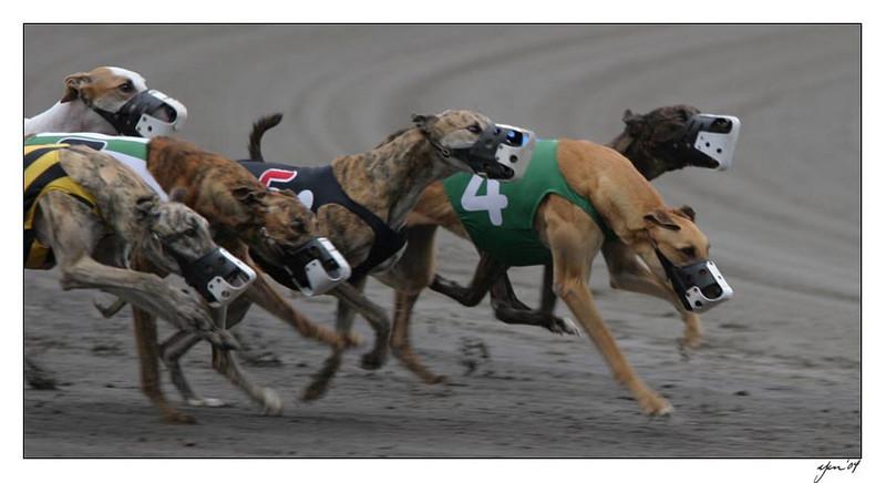 racing 05-29-04 14