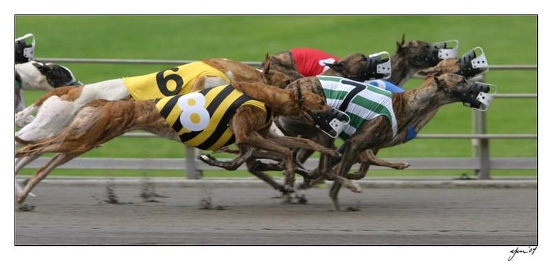 racing 05-29-04 08